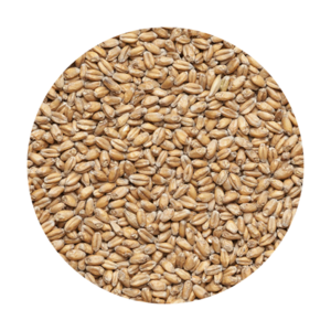 Солод Wheat VIKING MALT